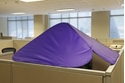 CubeShield Purple Back View